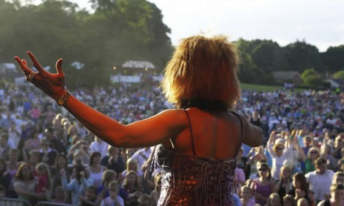 Tina Turner Tribute at Picnic to music in The Park Farnborough